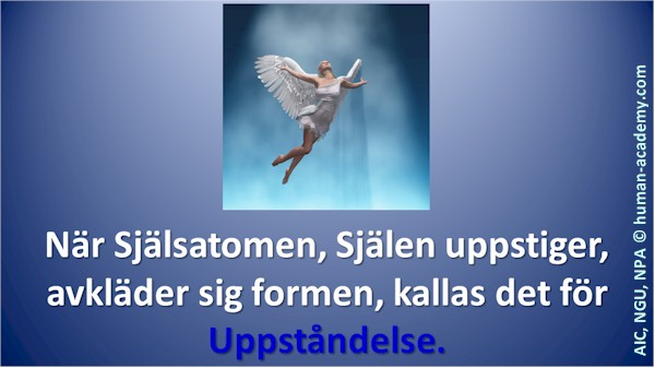 171_aic_uppstandelse