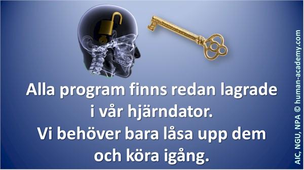 189_aic_hjarnprogram