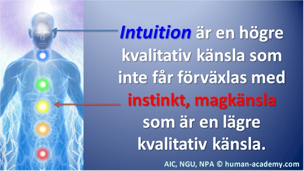 78_aic_intuition_instinkt
